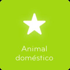 Soluciones 94 Animal doméstico