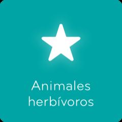 Soluciones 94 Animales herbívoros