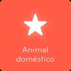 Respuestas 94% Animal doméstico