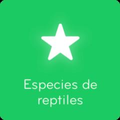 Respuestas 94% Especies de reptiles