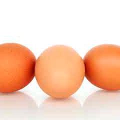 imagen huevos 94