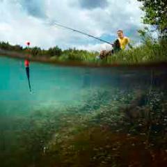 94 Respuestas imagen pesca