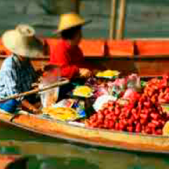 94 Respuestas barcas fruta