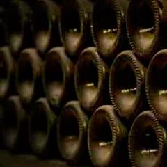 imagen botellas de vino 94