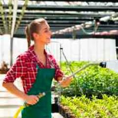 94 Respuestas imagen jardinera