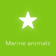 Marine animals 94