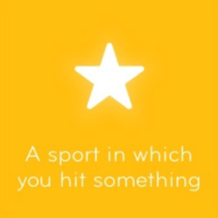 A sport in which you hit something 94