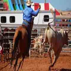 Imagen rodeo 94
