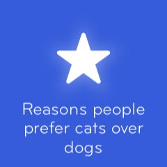 Reasons people prefer cats over dogs 94