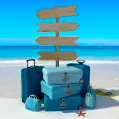 94 imagen maletas playa