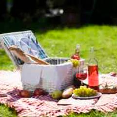94 imagen picnic