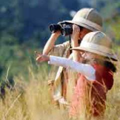 94 imagen niños safari