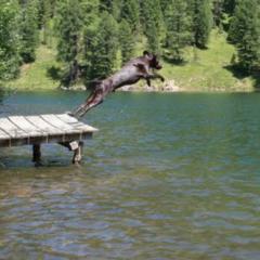 imagen lago 94