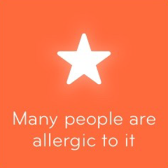 Many people are allergic to it 94