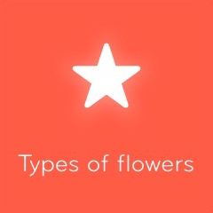 Types of flowers 94