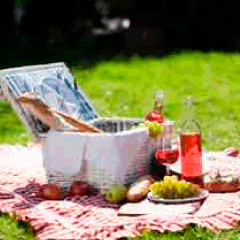94 picnic basket picture