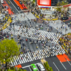 94 people crossing picture