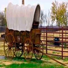 94 wagon image