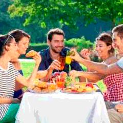 94 picnic picture
