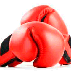 94% Boxing gloves picture answers