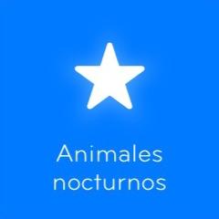 94 Animales nocturnos