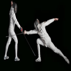 94% Fencing picture answers