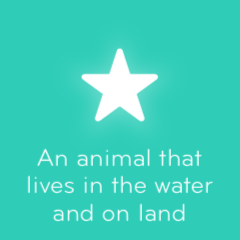 An animal that lives in the water and on land 94