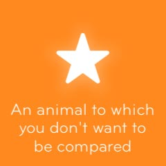 An animal to which you don't want to be compared 94