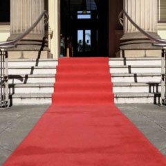 imagen alfombra roja 94