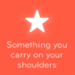 Something you carry on your shoulders 94